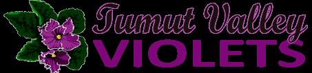Tumut Valley Violets
